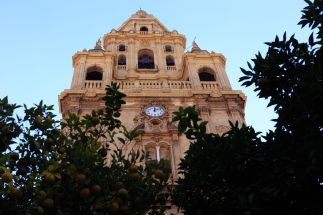 catedral 05