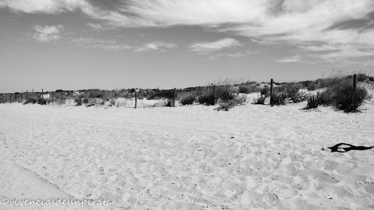 Playa Enebrales 2